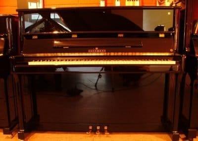 brodmann-pe-1-21-1-la-galeria-del-piano