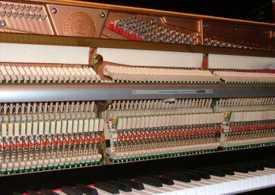 brodmann-pe-1-21-2-la-galeria-del-piano