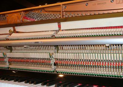 brodmann-pe-1-21-3-la-galeria-del-piano